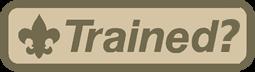 Recent updates: Training in progress, bankruptcy news
