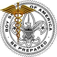 Bsa Health Form | The Bsa Medical Form And Your Troop Bobwhite Blather
