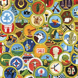 Group instruction of merit badges